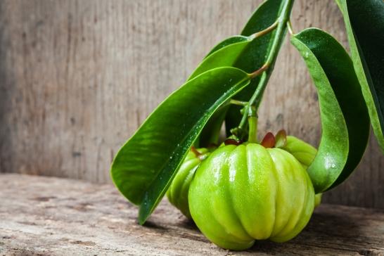 Gardenia Cambodia Weight Loss