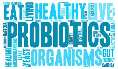 Probiotics Help Improve Digestion and Gut Health